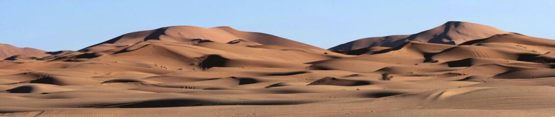 Sand Dunes Panorma in the Sahara Desert