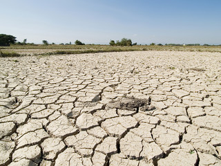 Dried earth because  the land lacked of water