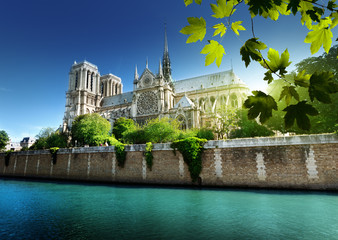 Notre Dame Paryż, Francja