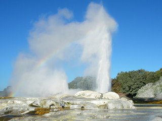 Pohutu Geyser eruption in Rotorua