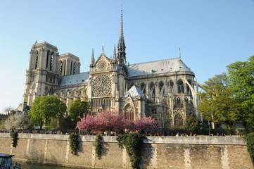 Notre Dame z Paryża