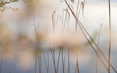lato woda jezioro tło