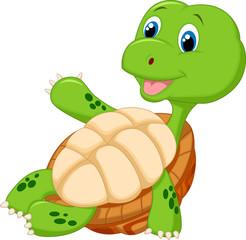 Cute tortoise cartoon relaxing