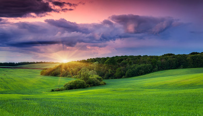 Colorful summer landscape with field of wheat and dramatic sky