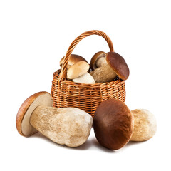 Basket with mushrooms