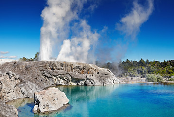 Pohutu Geyser, New Zealand