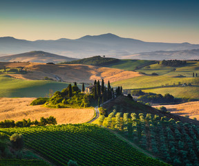 Tuscany landscape in golden morning light, Val d'Orcia, Italy