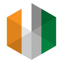 Ireland Flag Hexagon Flat Icon Button