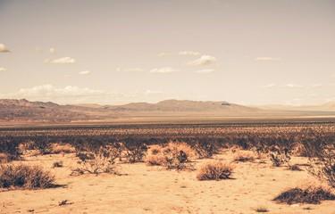 Pustynia południowej Kalifornii