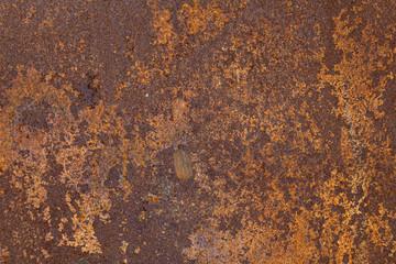 Zardzewiały metal tekstury