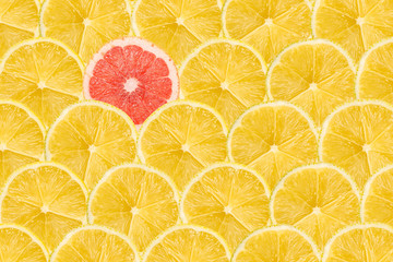 One Pink Grapefruit Slice Stand Out Of Yellow Lemon Slices