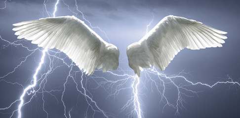 Angel wings with background made of sky and lightning