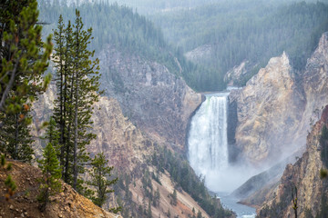 Grand Canyon of Yellowstone National Park, Wyoming