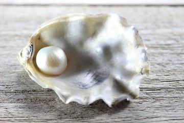 Auster mit Perle auf Holztisch
