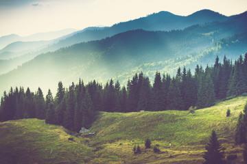 Piękny letni krajobraz górski.