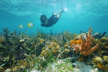 Man snorkeling underwater looks reef fish