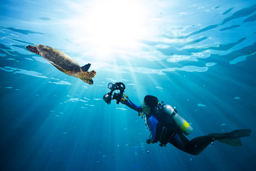 diver takes photo of sea turtle in the blue ocean
