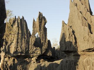 Tsingy de Bemaraha National Park. Unesco World Heritage in Madag