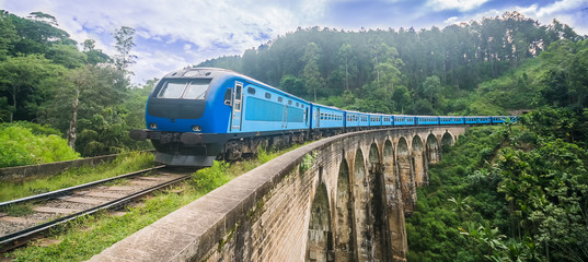 The udarata menike train is on the world famous Demodara nine arch bridge
