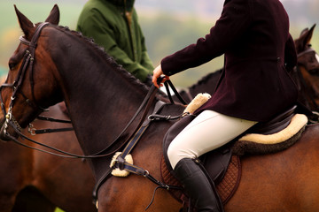 Woman riding horse Woman on horse talking to another rider at a hunt,