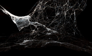 Abstract Spiderweb on black background