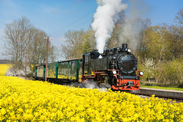 Historical steam train on island Ruegen in spring