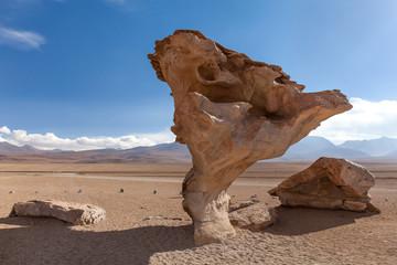 Formazione rocciosa ( Arbol de piedra ) , deserto del Siloli, Bolivia