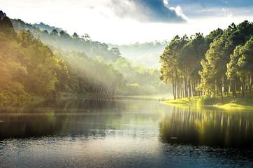 Pang Ung, odbicie sosny w jeziorze