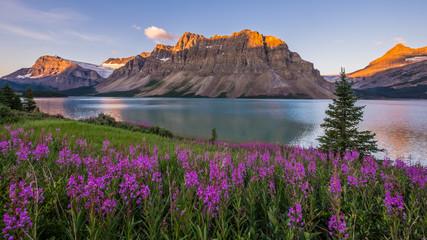 Wschód słońca nad Bow Lake w Parku Narodowym Banff