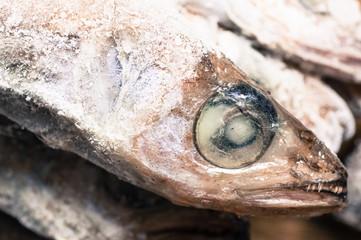 Thawed frozen fish head
