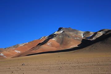 Bolvian desert