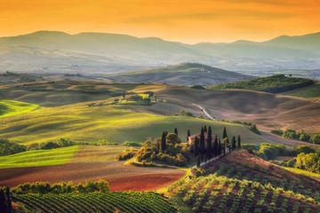 Krajobraz Toskanii o wschodzie słońca. Toskański dom wiejski, winnica, wzgórza.
