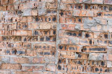 The old brick wall