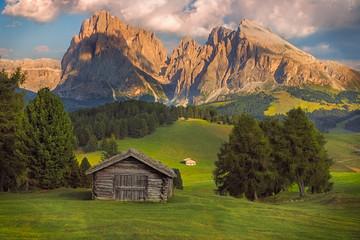 Seiser Alm z grupą Langkofel, Południowy Tyrol, Dolomity, Włochy