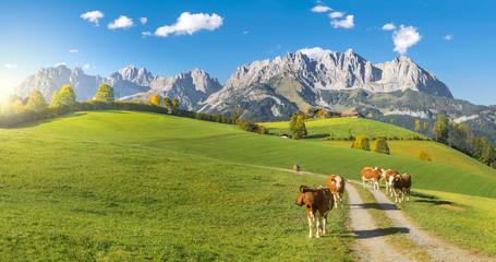 Herbststimmung Wilder Kaiser Tirol