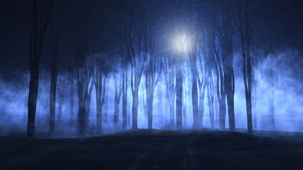 3D foggy spooky forest