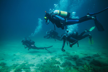 Four divers underwater
