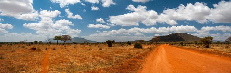Landscape of Tsavo East, Kenya