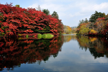長野県 秋の軽井沢 雲場池の紅葉