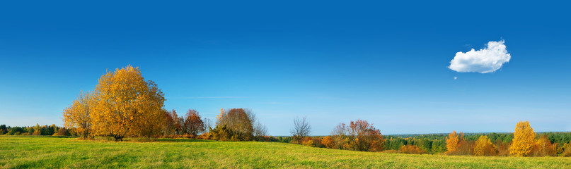 Field panorama on autumnal day