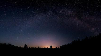 Nocne niebo nad lasem