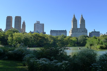 Scene of Central Park and New York Upper West Side