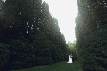 gorgeous elegant luxury bride and stylish groom walking on the b