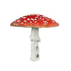 Red poison mushroom