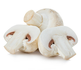 Champignon mushrooms close-up isolated on a white background.