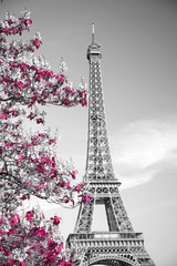 infrared photography Eiffel Tower