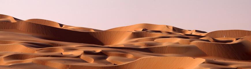 Pustynna wydma