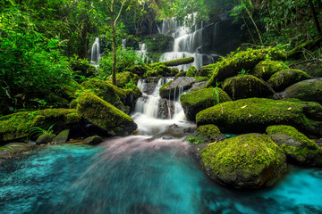 beautiful waterfall in green forest in jungle