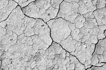 susza popękana tekstura gleby