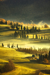 Tuscany foggy morning, farmland and cypress trees. Italy.